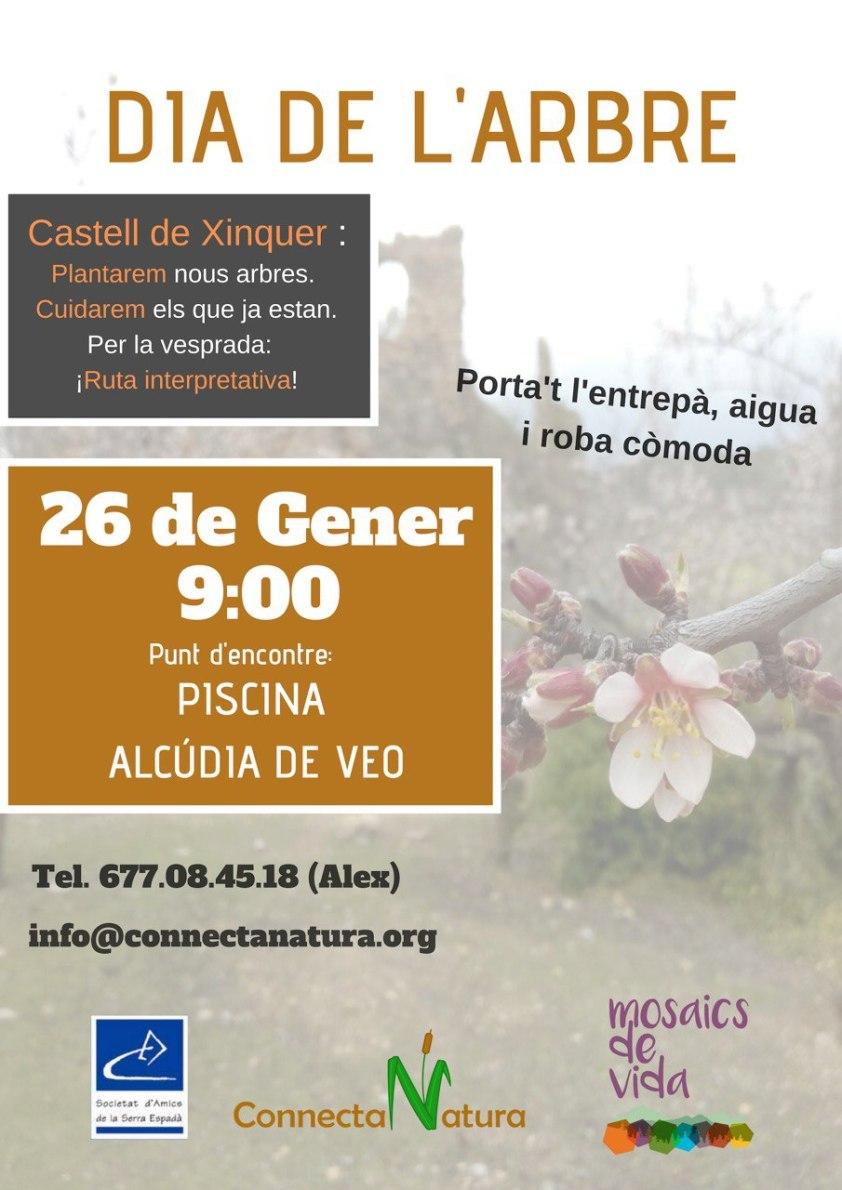 dia de l´arbre_ alcudia de veo_ conecta natura